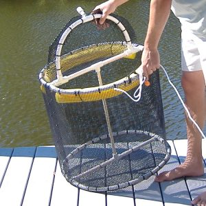 Baitbaskets Com Born To Fish Forced To Work